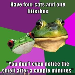 "Have four cats and one litterbox  ""You don't even notice the smell after a couple minutes"""