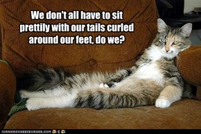 We don't all have to sit prettily with our tails curled around our feet, do we?