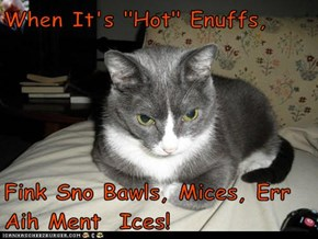 """When It's """"Hot"""" Enuffs,  Fink Sno Bawls, Mices, Err Aih Ment  Ices!"""