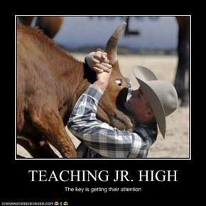 TEACHING JR. HIGH