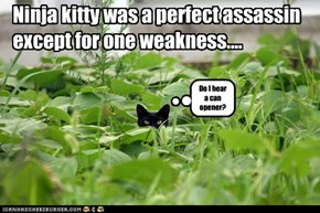 Ninja kitty was a perfect assassin except for one weakness....