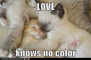 LOVE  knows no color