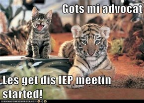 Gots mi advocat  Les get dis IEP meetin started!