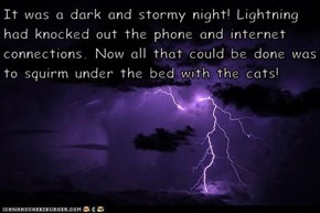 It was a dark and stormy night! Lightning had knocked out the phone and internet connections. Now all that could be done was to squirm under the bed with the cats!