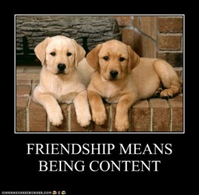 FRIENDSHIP MEANS BEING CONTENT