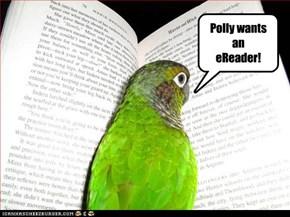 First World Bird Problems