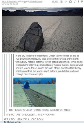 IT WAS THIS ROCK THE WHOLE TIME