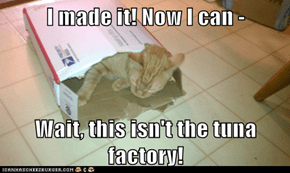 I made it! Now I can -  Wait, this isn't the tuna factory!