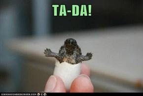 TA-DA!