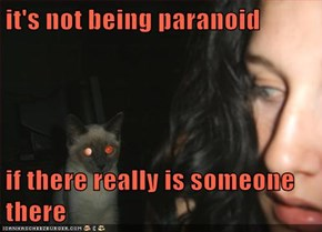 it's not being paranoid  if there really is someone there