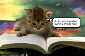 da beztezt part ov diz book iz mizzin
