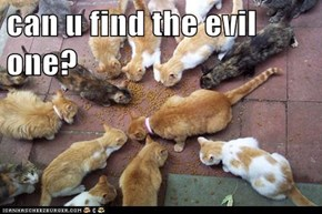 can u find the evil one?