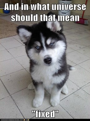 Skeptical Newborn Puppy: Sounds More Like You're Breaking Something