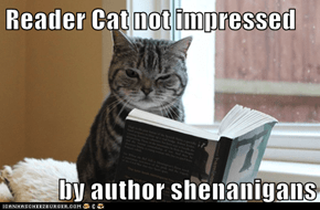 Reader Cat not impressed  by author shenanigans