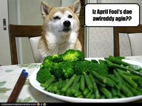 Iz April Fool's dae awlreddy agin??