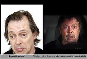 Steve Buscemi Totally Looks Like Tim Curry- Unsub -Criminal Minds