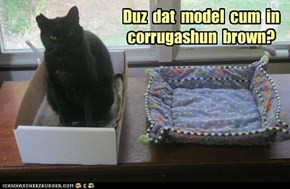 Duz  dat  model  cum  in corrugashun  brown?