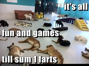 it's all fun and games till sum 1 farts