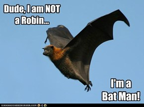 Dude, I am NOT a Robin...