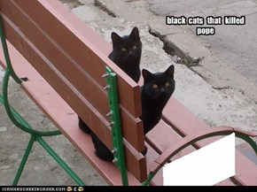 black  cats   that   killed  pope