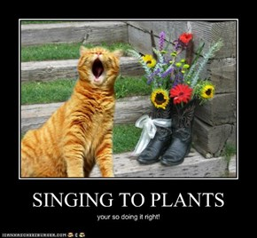 SINGING TO PLANTS