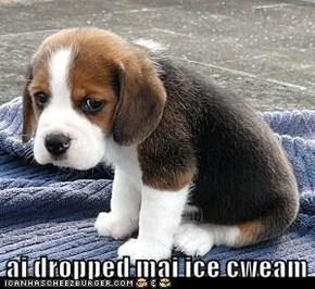 ai dropped mai ice cweam