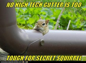NO HIGH TECH GUTTER IS TOO   TOUGH FOR SECRET SQUIRREL