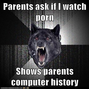 Parents ask if I watch pr0n  Shows parents computer history