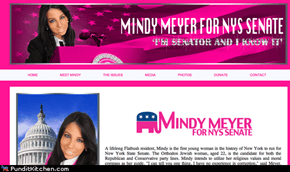 Mindy Meyer for Senate