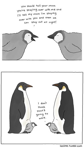 Penguin BFFs