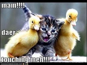 mam!!!! daer touching meh!!!
