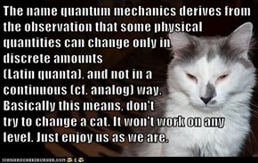 The name quantum mechanics derives from the observation that some physical quantities can change only in                                            discrete amounts                                               (Latin quanta), and not in a