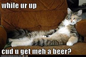 while ur up  cud u get meh a beer?