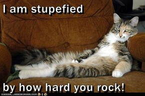 I am stupefied  by how hard you rock!