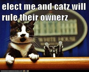 elect me and catz will rule their ownerz