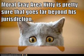 Moral Gray Area Kitty is pretty sure that goes far beyond his                      jurisdiction.