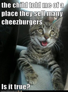 the child told me of a place they sell many cheezburgers  Is it true?