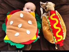 Around the Interwebs: A Gallery of Hotdogs