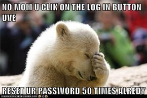 NO MOM U CLIK ON THE LOG IN BUTTON UVE   RESET UR PASSWORD 50 TIMES ALREDY