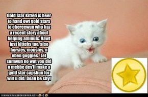 Gold Star Kitteh is heer!
