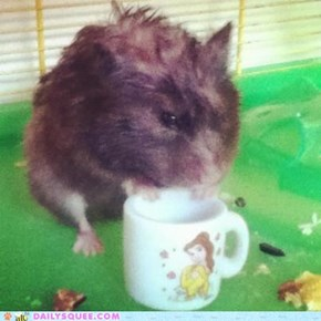 """Cuppa tea anyone?"""