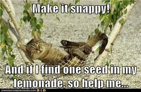 Make it snappy!  And if I find one seed in my lemonade, so help me...
