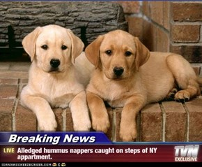 Breaking News - Alledged hummus nappers caught on steps of NY appartment.