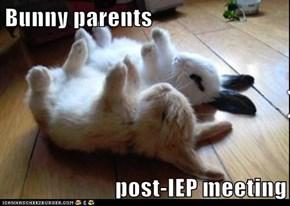 Bunny parents  post-IEP meeting