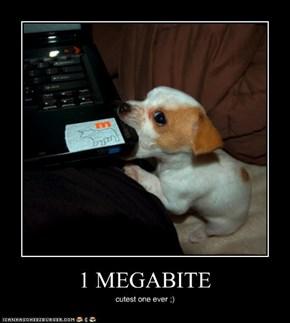 1 MEGABITE