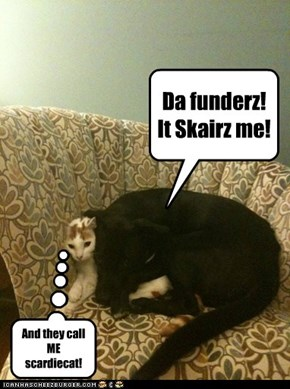 Da funderz! It Skairz me!