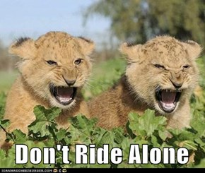 Don't Ride Alone