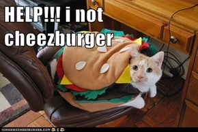 HELP!!! i not cheezburger