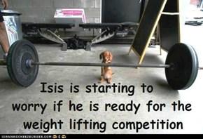 Kamp Olimpiks - Poor Isis