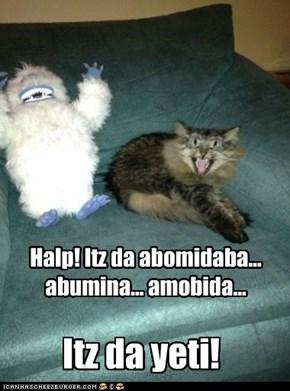 Abomidabul Sno-cat